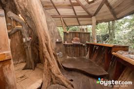 treehouse. Tree House Lodge Treehouse