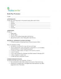 Home Birth Plan Worksheet Birth Plan Worksheet Printable Excel Baby Home 945 X 1223 Attachment