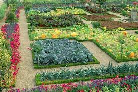 Small Picture Elegant Flower And Vegetable Garden Layout Garden Plans