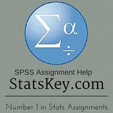spss stats homework help statistics assignment and project help spss stats assignment homework help