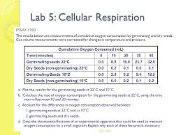 lab cellular respiration lab cellular respiration  lab 5 cellular respiration essay 1990 the results below are measurements of cumulative oxygen consumption