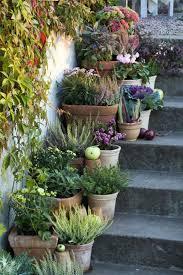 Sammlung von alex bühler • zuletzt aktualisiert: Garten Deko Ideen Die Garten Oder Haustreppe Mit Blumen Dekorieren Garten Garden Spaces Terrace Garden Container Gardening