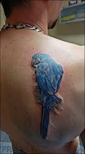 Freestyle Tattoo Tetování