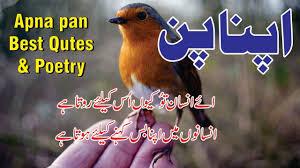 Apna Pan Poetry And Love Quotes In Urdu Hindi Urdu Poetry Sad