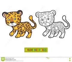 coloring book jaguar stock vector ilration of leopard 76819610