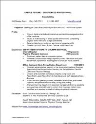 010 Professional Resume Template Examples Example Inspirational