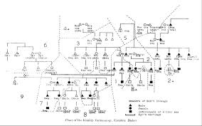 Anthropology Genealogy Chart Diagrams In Anthropology Lines And Interactions Life Off