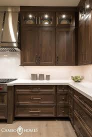 dark stained kitchen cabinets. Plain Dark How To Stain Cabinets Darker Bathroom Interior Design Staining  Kitchen  Intended Dark Stained Kitchen Cabinets I