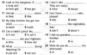 Итоговая контрольная работа по английскому языку для класса УМК  40