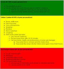 Asthma Zone Chart Cip 3 Nathan Millikans Portfolio