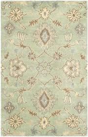 light green rug elegant home light green area rug reviews light green area rug decor light light green rug
