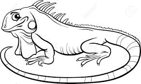 面白いイグアナ トカゲ爬虫類動物キャラクター塗り絵用の黒と白の漫画イラスト
