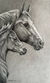 wild horse drawings in pencil. Fine Wild Equine Art An Original Equine Graphite Pencil Drawing Of A Quarter Horse  Mare And Foal Entitled  For Wild Drawings In Pencil L