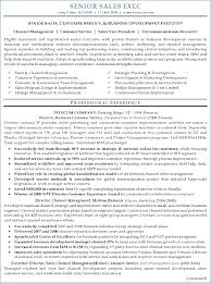 Ceo Resume Template Download Best of Ceo Resume Template Artemushka