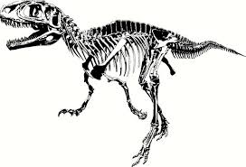 Image result for dinosaur divider
