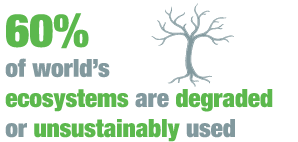 UNCTAD DGFF2016 SDG Goal 15 - Life on land