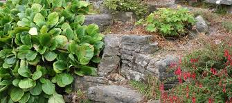 Small Picture Rock Garden Designs for the Best Rock Gardens PICTURES