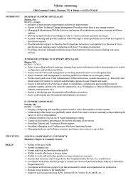 It Support Resume IT Support Specialist Resume Samples Velvet Jobs 4