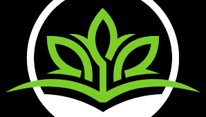 Budget Lawn Care Atlanta Lawn Care Services All Turf Lawn Care