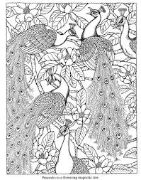 Small Picture Nature Coloring Pages Coloring Pages Birds Coloring Book Peacock