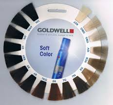 Goldwell In 2019 Hair Color Beige Blonde Hair Beauty __cat__