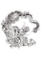 竜の写真素材 人気順 フォトライブラリー Photolibrary