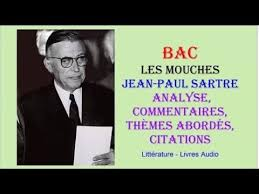 BAC   Les Mouches de Jean Paul Sartre  Analyse  commentaires  th  mes abord  s  Pinterest