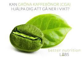 Grönt kaffe fungerar det