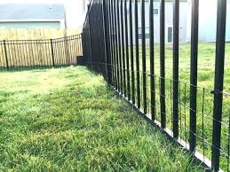 invisible fence for small dogs. Yard Dog Fence Small Ideas Gorgeous Keep In With Welded Wire Pet Innotek Invisible Collar Your For Dogs A