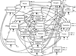 Industrial metabolism restructuring for sustainable development unu 1994 376 pages