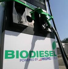 What Is Biodiesel FuelBackyard Biodiesel