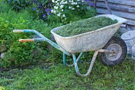 work grass lawn wheel cart tool transport vehicle backyard soil garden tools move yard wheelbarrow sliding
