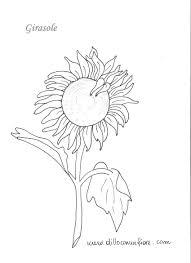 Disegno Rosa Tumblr Con Come Disegnare Una Rosa E Tumblr 1280 Come