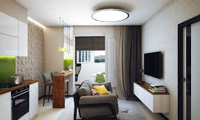 Brilliant One Bedroom Apartment Interior Design On Minimalist 1 Designed  For A Young Man