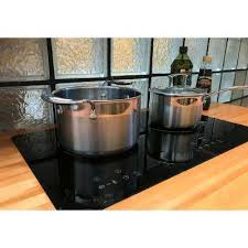 compare 24 in glass induction cooktop in black with 2 induction elements