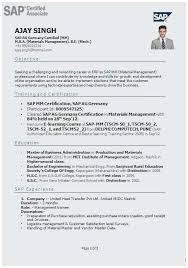 Sap Sd Consultant Resume Sample Terrific Sap Fico Cv
