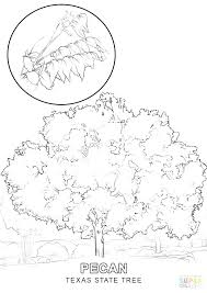 Texas Symbols Coloring Pages Flag Coloring Page Click The State