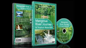 Relaxing Video Relaxing Video Mangrove Journey Tropical Waterfalls With Nature