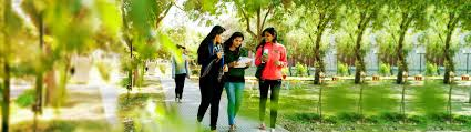 tips tricks to smartly survive first year of college perhaps