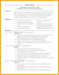 Resume Server Skills Magnificent Resume Objective Examples For Restaurant Server Template New Skills