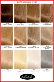 Organized Tones Of Blonde Hair Color Golden Chart 346763 The