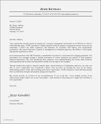 Example Resume Cover Letter For Executive Position Unique