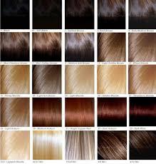 28 Albums Of Dark Golden Brown Hair Color Chart Explore
