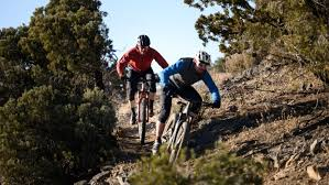 10 best mountain bikes of 2020 gearlab
