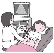 「経膣超音波検査」の画像検索結果