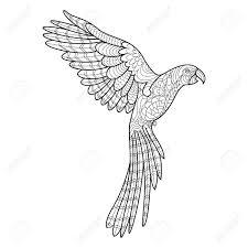 オウムのコンゴウインコ鳥大人ベクトル イラストの塗り絵大人のための着色抗ストレスzentangle