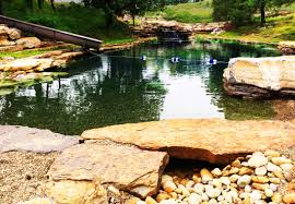 Grotto Design With Pond Blog Natural Swimming Pools Ponds Design Construction