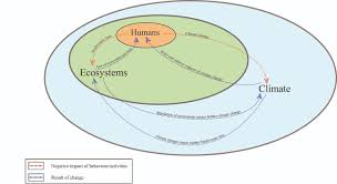 ecosystem services analysis in response to biodiversity loss list of illustrations