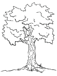 Coloring Winter Tree Coloring Page