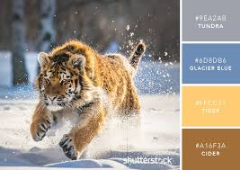 Tiger Color Chart 101 Color Combinations To Inspire Your Next Design Colors